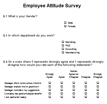 Employee Attitude Survey Example